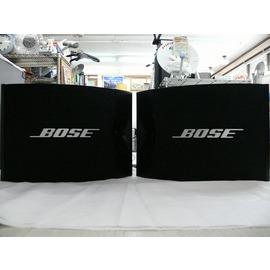 BOSE 301V